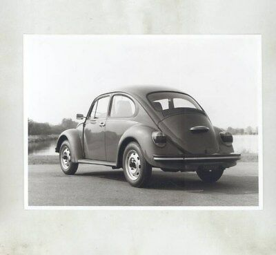 1975 Volkswagen Beetle ORIGINAL Factory Photograph wy7107