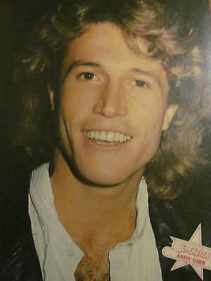 Andy Gibb, Leif Garrett, Double Full Page Vintage Pinup