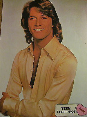 Andy Gibb, Donny Osmond, Double Full Page Vintage Pinup