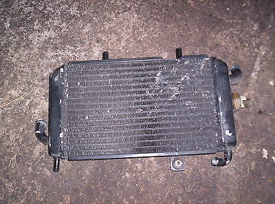 Piaggio Hexagon 125 Radiator Free Post