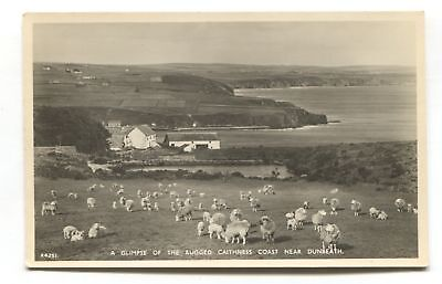Dunbeath, Caithness - town, coast & sheep - c1950's real photo postcard