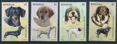 [H0475] Romania 2012 Dogs Very Fine MNH set of stamps