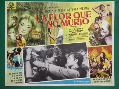 Audrey Hepburn Green Mansions Anthony Perkins Orig Spanish Mexican Lobby Card 4