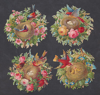 S8421 Victorian Die Cut Scraps: 4 Bird Nests in Flowers