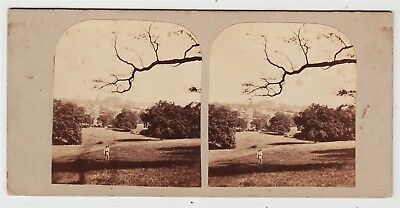Stereoview-SUSSEX, Newick, country scene with farm labourer