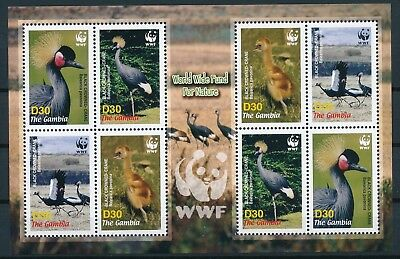 [GE15290] Gambia 2006 WWF Birds good sheet very fine MNH