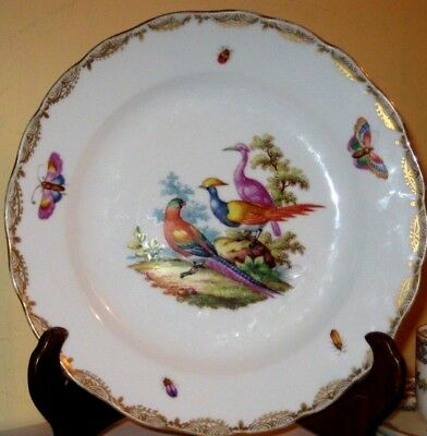 19thc Meissen outside decorated dish with exotic bird decoration