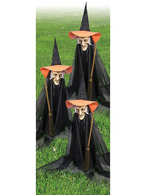 Group of Spooky Witch Lawn Props