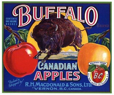 BUFFALO Vintage Canadian Apple Crate Label, Canada, Bison, AN ORIGINAL LABEL