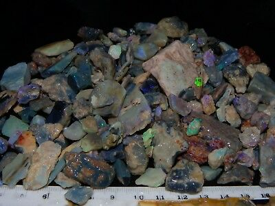 Lightning Ridge Opal Rough Parcel 1291cts Fossil/Seam/Nobby, Some Fires. NR