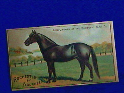 Extra Nice Trade Card-Horse-Rochester by Aberdeen-DOMESTIC Machine-BACK GRAPHICS