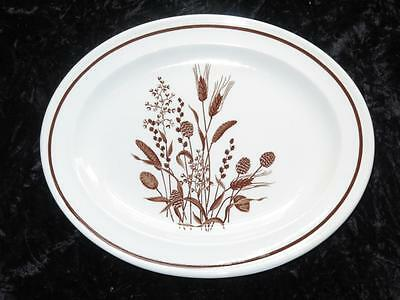 Replacement China Oval Platter Alfred Meakin (Royal Victoria) COUNTRY LANE