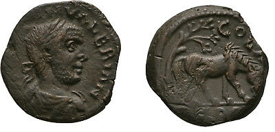 Ancient Rome ALEXANDRIA TROAS 253-260 AD VALERIAN  Horse POMEGRANATE tree