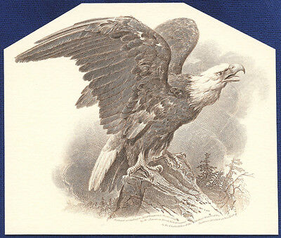 AMERICAN BANK NOTE Co. ENGRAVING: THE FAMOUS EAGLE 76