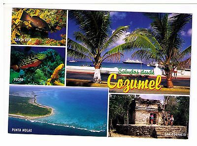 Postcard: Multiview - Cozumel, Mexico
