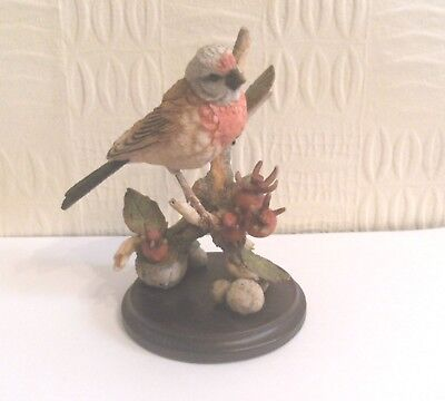 A Lovely Country Artists Model of a Linnet with Rosehips, Boxed, Broadway Birds