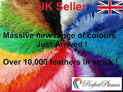 """8""""-14"""" 20-35 cms COLOURED OSTRICH FEATHERS  Packs of 1-100 ALL COLOURS"""