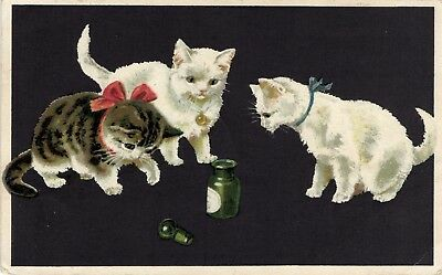 Helena Maguire ? 3 cats kittens playing with bottle old beautiful artist postcar