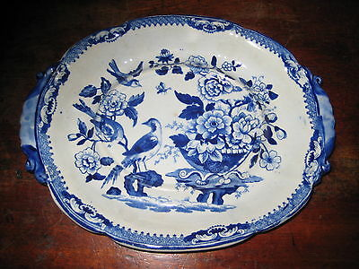 English Blue & White Pearlware Under Dish Bird Flowers