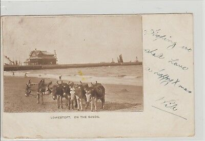Lowestoft On The Sands Shows Pier & Donkeys Undivided Back P/M Lowestoft 1902