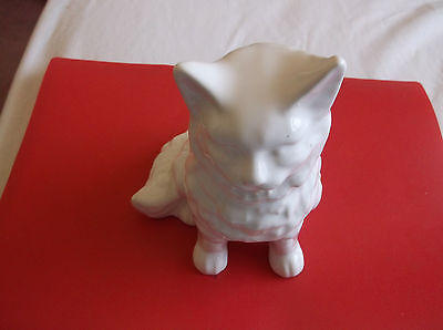 China   Cat    Not Solid  White All Over