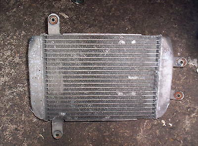 Suzuki Burgman An400 Radiator And Fan 2003 Free Post