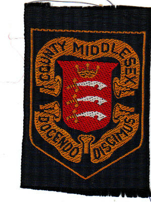 Boy Scout Badge 1950`s +Ext MIDDLESEX County