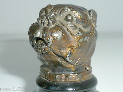 Antique match striker holder Bull Dog Head figural vesta case