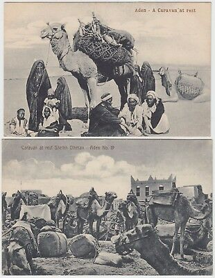 MIDDLE EAST 2x ADEN post cards of *CAMELS CARAVAN at REST* not used