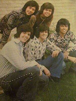 The Osmonds, Donny Osmond, Full Page Vintage Pinup, Brothers