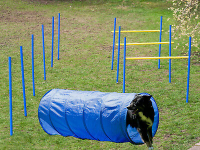 Agility Set Slalom Hürden Tunnel Agilityset Hunde Training Hundesport Obedience