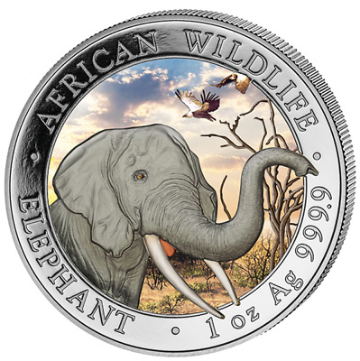 1oz Somalia Elefant - Elephant Tag / Day Farbe - colored 2018