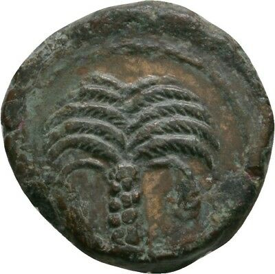 Lanz Carthage Palm Tree Pegasus Bronze North Africa Greek Scarce §ve1802