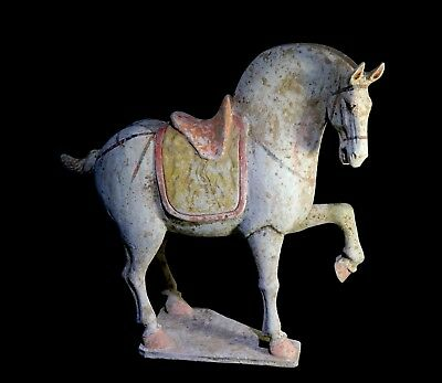 Impressive Chinese White Horse with TL Test - Tang Dynasty