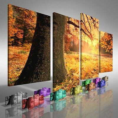 Fields of Tree Leaves Offset Canvas Print Large Picture Wall Print