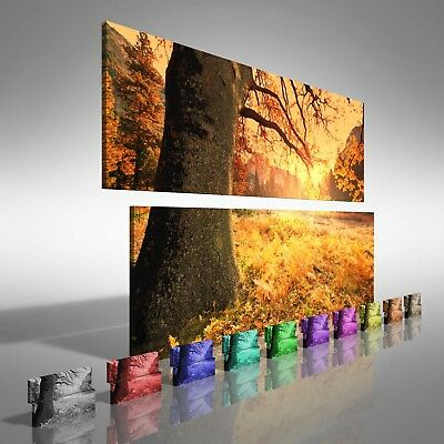 Fields of Tree Leaves Double Canvas Print Large Picture Wall Print
