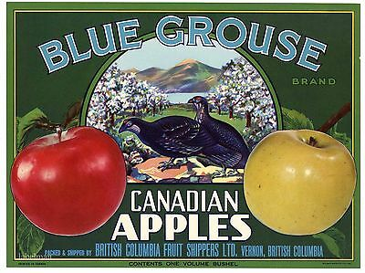 BLUE GROUSE Brand, Blooming Orchard **AN ORIGINAL APPLE FRUIT CRATE LABEL** B39