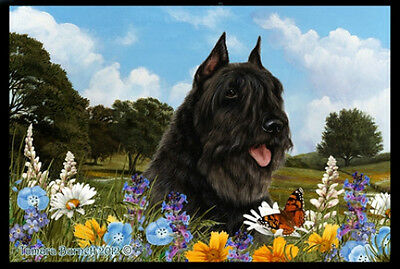 Indoor/Outdoor Summer Floor Mat - Bouvier des Flandres (TB) 39033