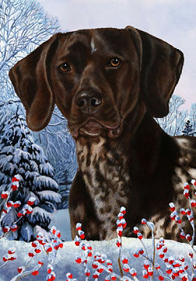 Large Indoor/Outdoor Winter Flag - German Shorthaired Pointer 15049