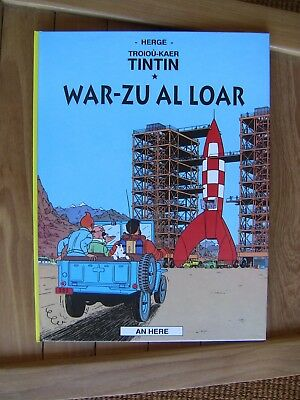 Tintin Kuifje Tim Breton Britton Rare  Edition  1996 Epuisee Ed An Here