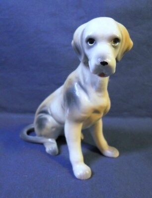 Ceramic SITTING HOUND SETTER POINTER DOG Figurine CAPODIMONTE Italy Hand Painted