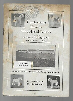 Humberstone Kennels Wire Haired Terriers Pedigrees Irving Ackerman c.1922