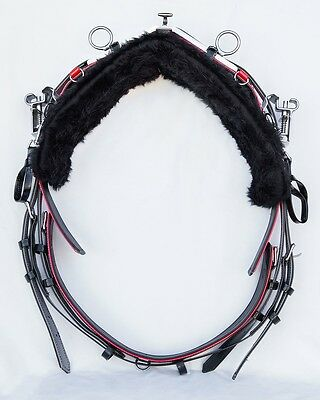 Quick Hitch Trotting Harness - Colour of YOUR Choice