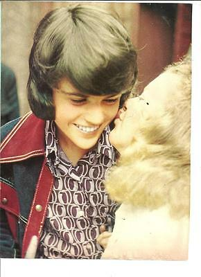 Donny Osmond, Osmond Brothers, Full Page Vintage Pinup, Osmonds