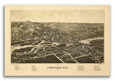 1888 Carthage New York Vintage Old Panoramic NY City Map - 20x30