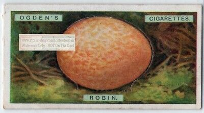 Robin Bird Egg With Pop-Up Image 90+ Y/O Ad Trade Card