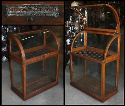 Antique Curve Glass Display Cane Case Umbrella Walking Stick Golf Club Tiger Oak