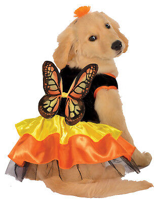 Dog Dress Up Monarch Butterfly Pet Halloween Costume