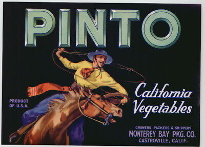 PINTO Vintage Vegetable Crate Label, Western, Cowboy, **AN ORIGINAL LABEL** s