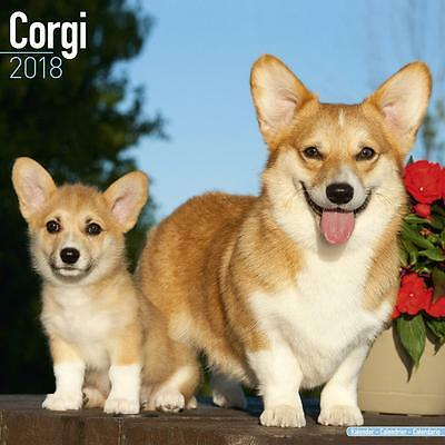 Corgi 2018 Calendar 15% OFF MULTI ORDERS